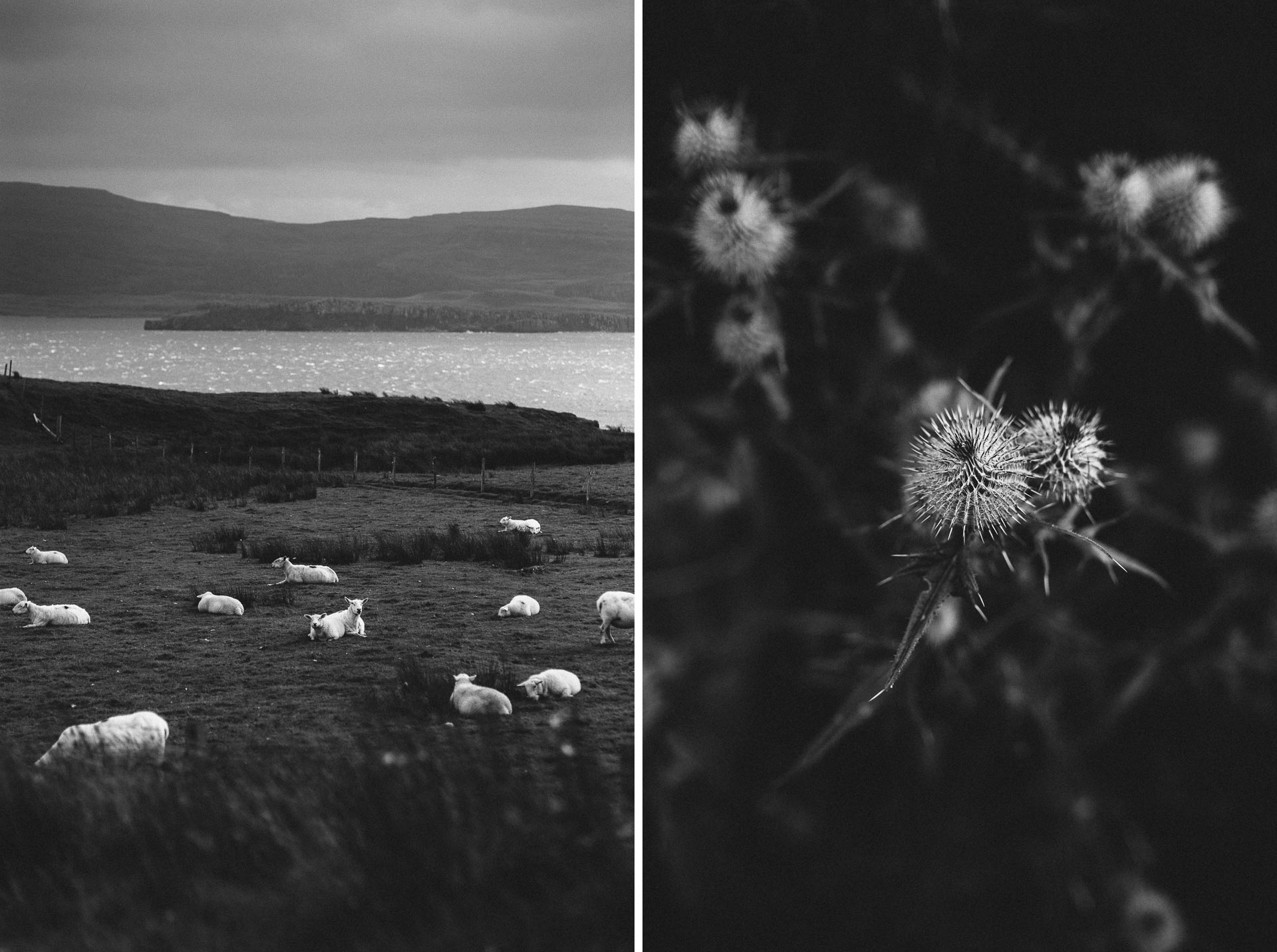 Megan_Matt_Elopement_IntimateWedding_Scotland_IsleOfSkye_JeanLaurentGaudy_MIX006
