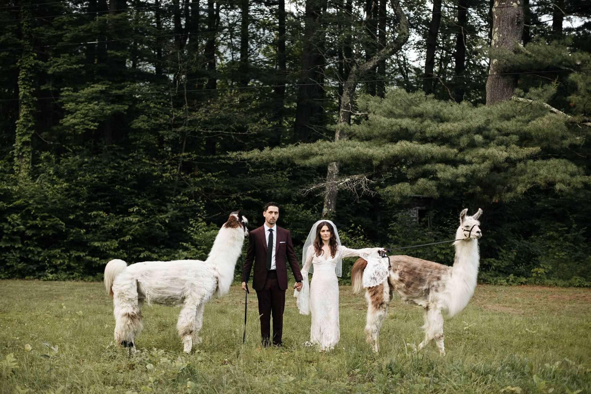 Rachel & David's Wedding . Foxfire Mountain House, Mount Tremper NY