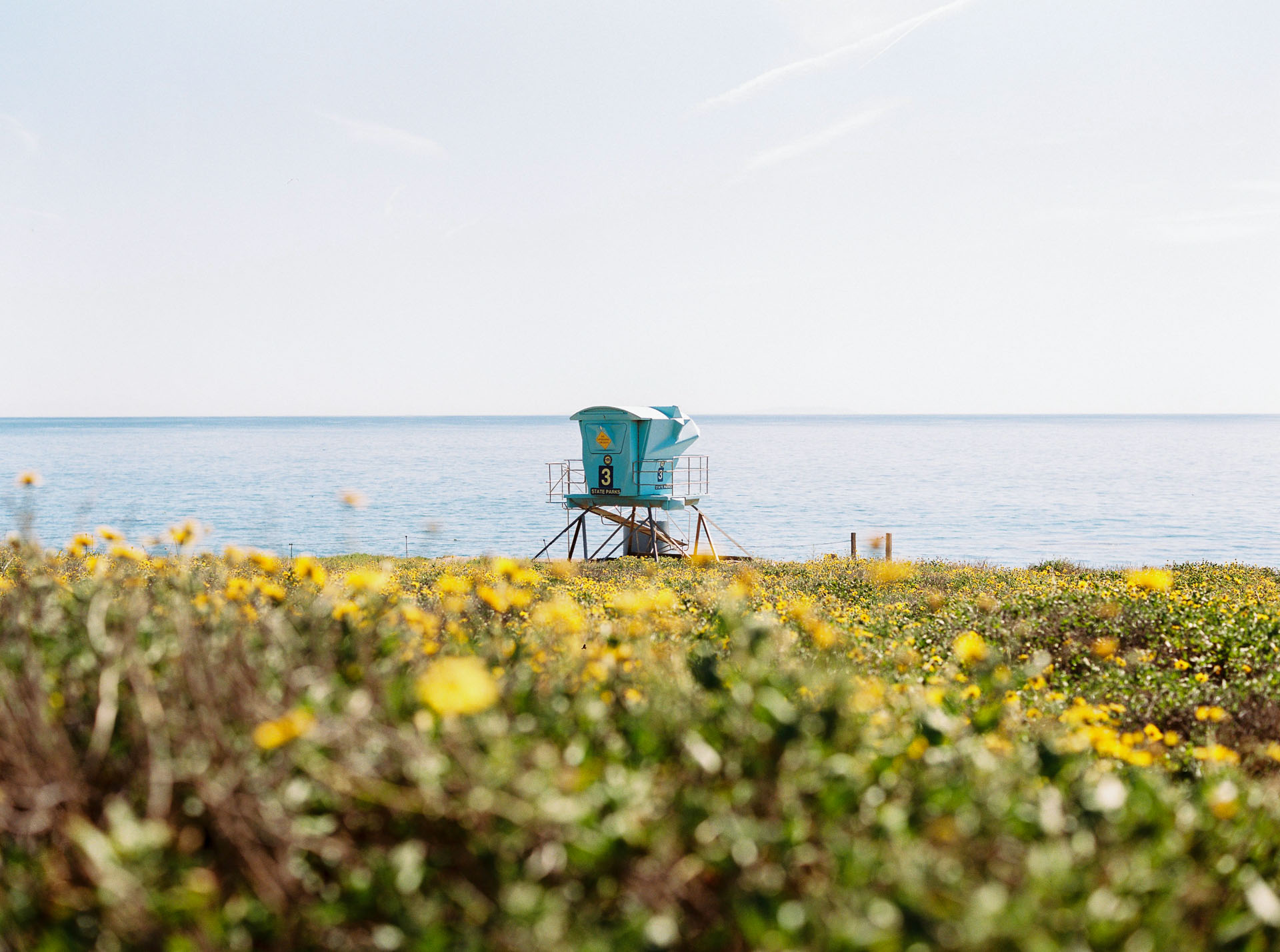 Field_Trip_2015_California_ElCapitanCanyon_JeanLaurentGaudy_002