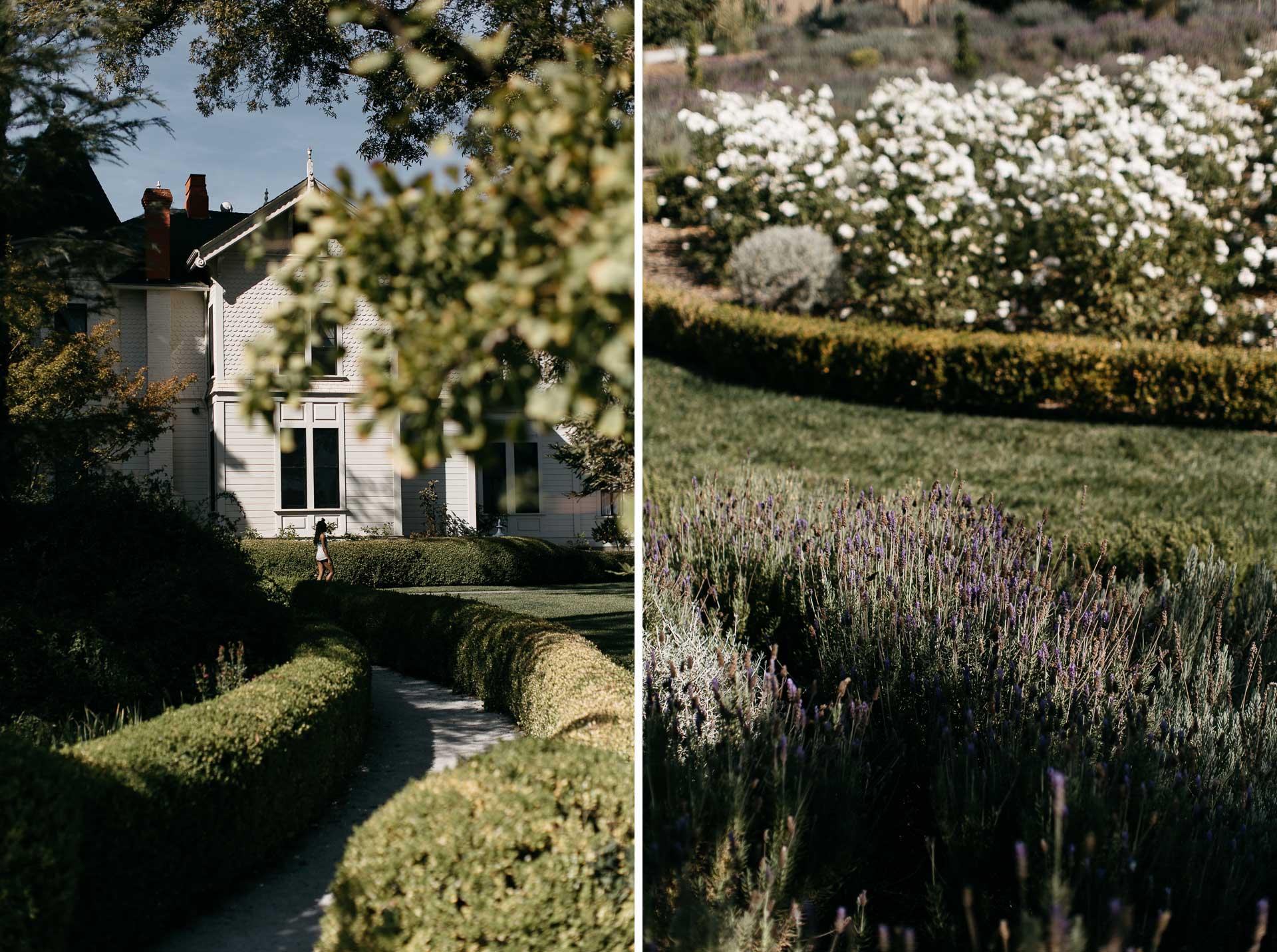 lauren_graham_wedding_california_park_winters_jeanlaurentgaudy_mix002